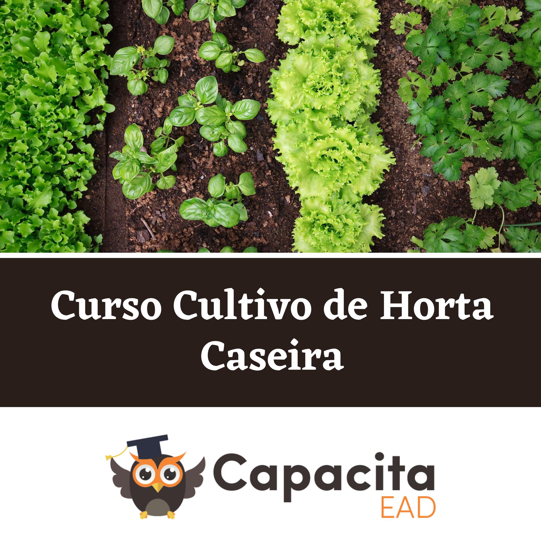 Curso Cultivo de Horta Caseira