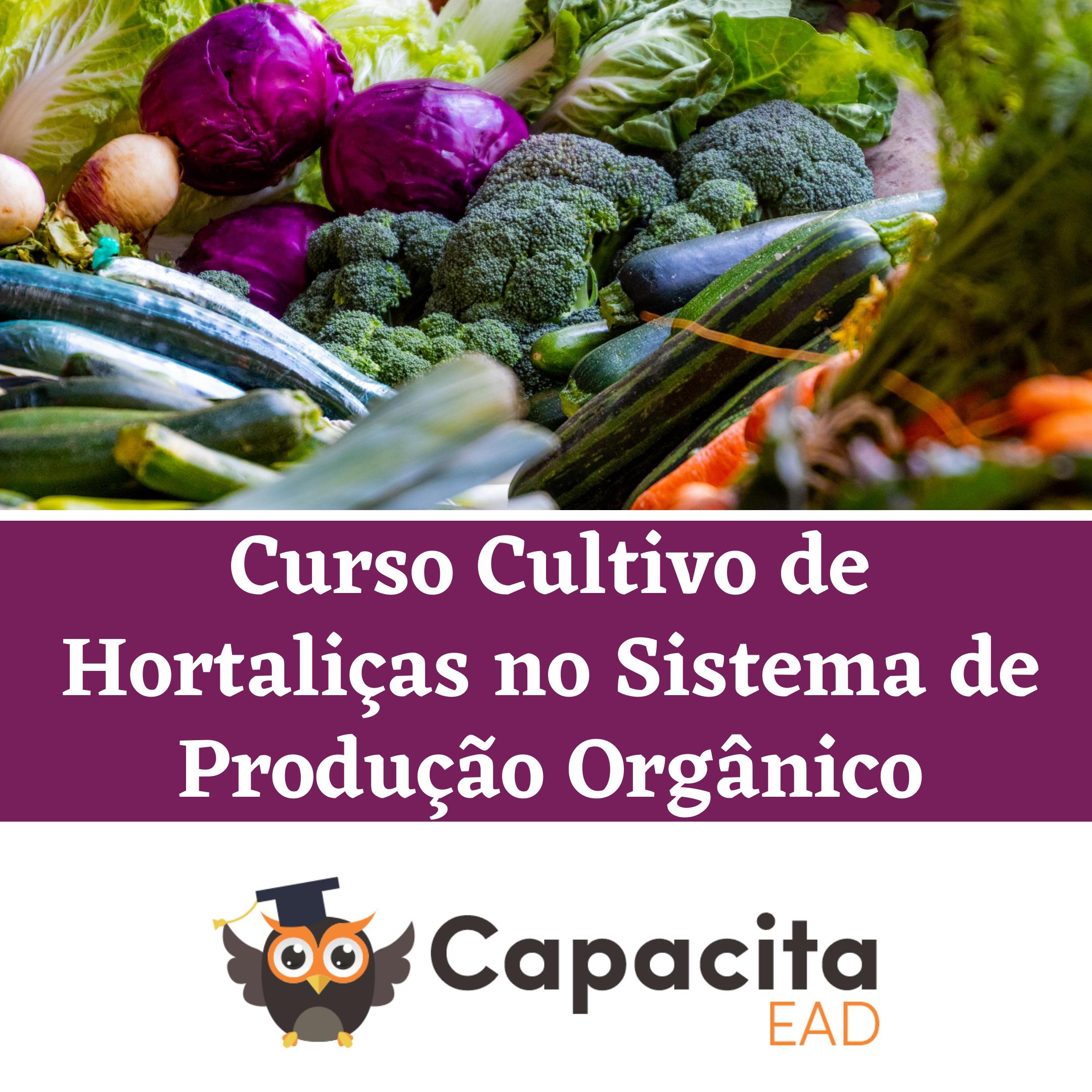 Curso Cultivo de Hortaliças no Sistema de Produção Orgânico