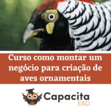 Curso como montar um negócio para criação de aves ornamentais